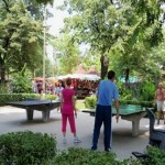 Pingpong Multi generational play proves popular abroad