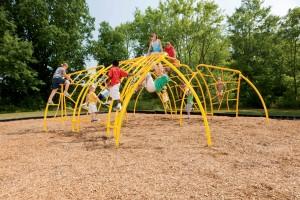 Climber Assessing a playground