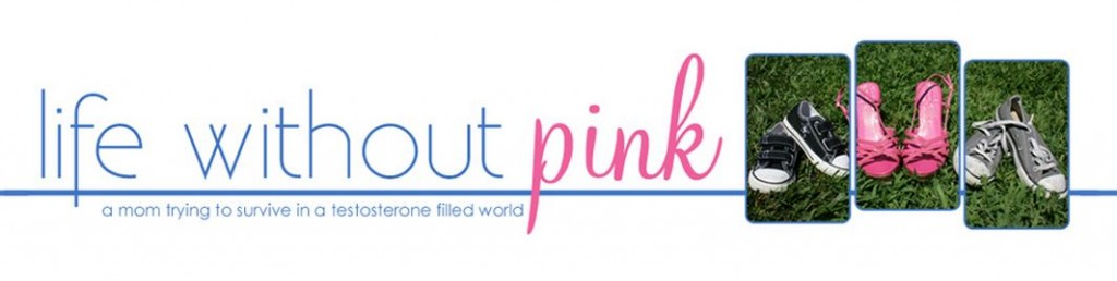 life without pink wwdop playworld guest post