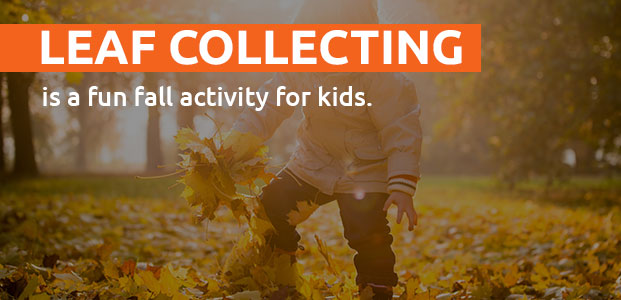 Leaf Collecting Is A Fun Fall Activity For Kids