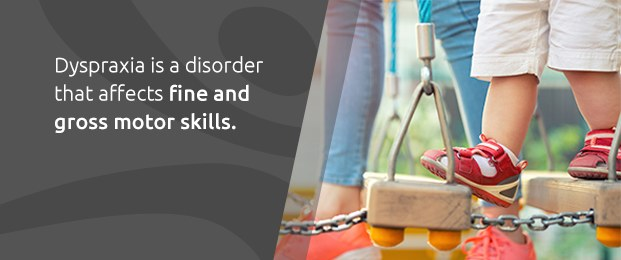 Dyspraxia Is A Disorder That Affects Fine And Gross Motor Skills.
