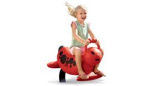 Funky Animals & Spring Riders product image